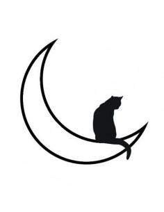 Kočka na měsíci -...