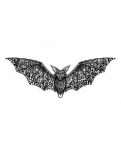 Krajkový netopýr -...