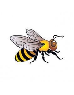 Včela - nalepovací tetování