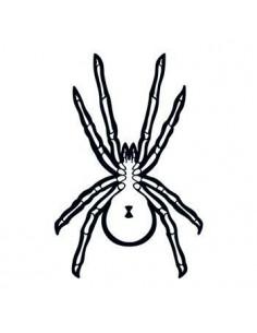 Pavouk svítící ve tmě -...