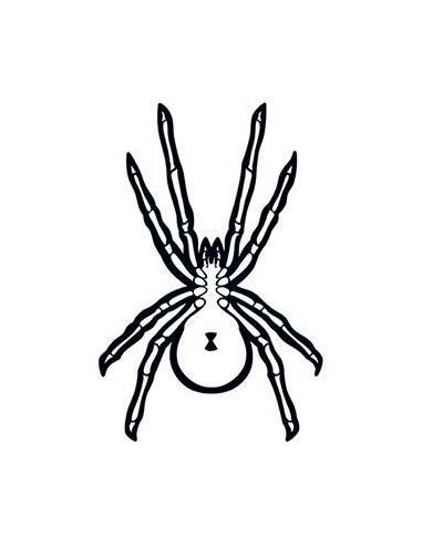 Pavouk svítící ve tmě - nalepovací...