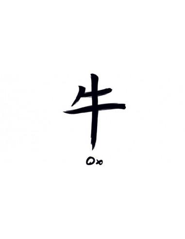 Znamení čínského zvěrokruhu Buvol -...
