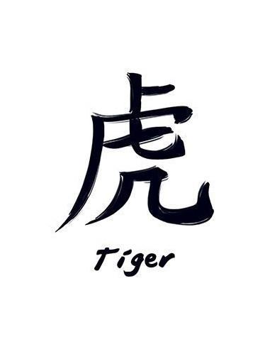 Znamení čínského zvěrokruhu Tygr -...