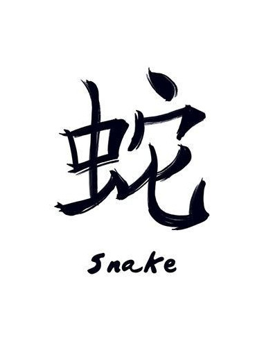 Znamení čínského zvěrokruhu Had -...