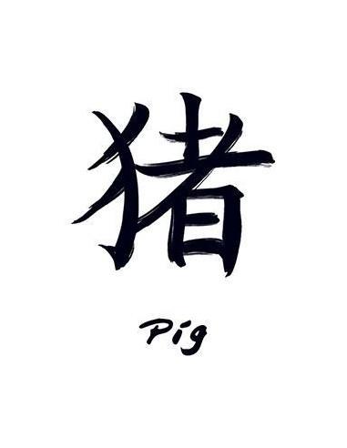 Znamení čínského zvěrokruhu Prase -...