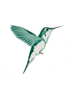 Kolibřík - nalepovací tetování