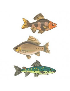 Ryby - sada tetovaček