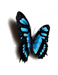 Modročerný motýl s 3D...