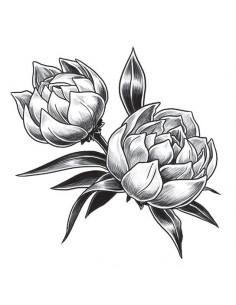 Dva šedé tulipány -...