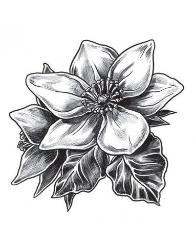Šedá magnólie - dočasné tetování