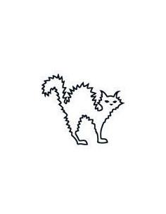 Naježená kočka svítící ve...