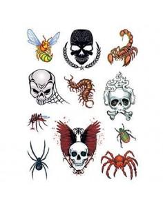 Lebky, pavouci a další...