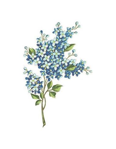 Modrá kytička - nalepovací tetování