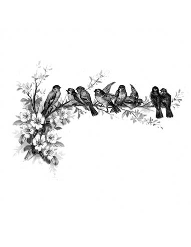 Ptáčci na větvi - nalepovací tetování