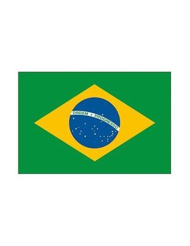 Brazilská vlajka - nalepovací tetování