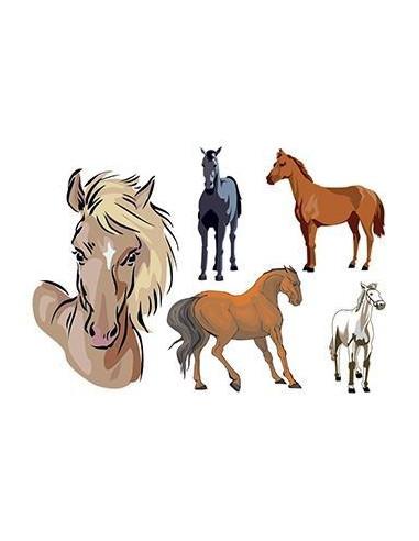 Koníci - sada tetovaček