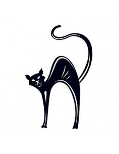 Černá kočka svítící ve tmě...