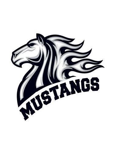 Kůň Mustangs - nalepovací tetování