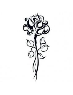 Růže na dlouhém stonku -...