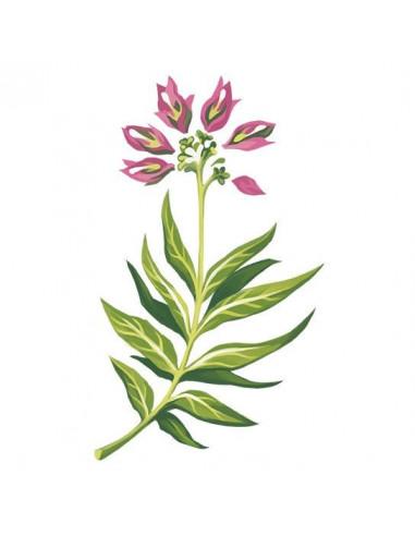 Růžová kytička - nalepovací tetování